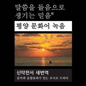 Новый завет на корейском языке mp3 - Revised New Korean Standard Version (North) Audio Drama New Testament